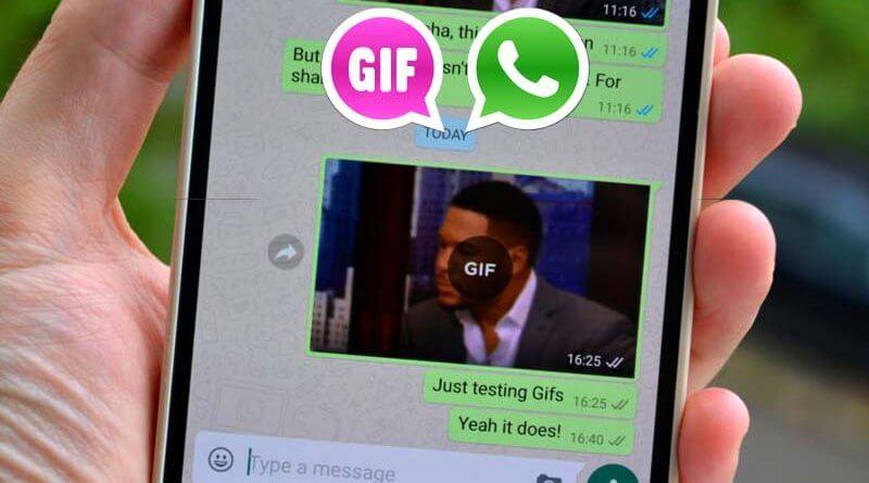 whatsapp'a gif geldi